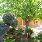 Ferienhaus Mallorca MA2310 Garten