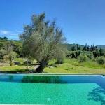Ferienhaus Mallorca MA2246 - Blick über den Pool