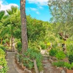 Ferienhaus Mallorca MA2287 Garten