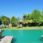Ferienhaus Mallorca 2003 Pool
