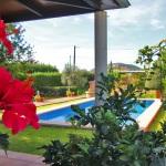 Ferienhaus Mallorca MA2030 - Blick auf den Pool