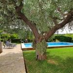 Ferienhaus Mallorca MA2040 - Garten mit Olivenbaum