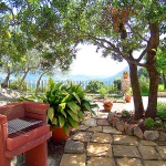 Ferienhaus Mallorca MA2259 - Grill