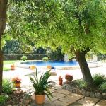 Ferienhaus Mallorca MA2259 - Grundstück