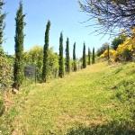Ferienhaus Toskana TOH170 - Gartenanlage