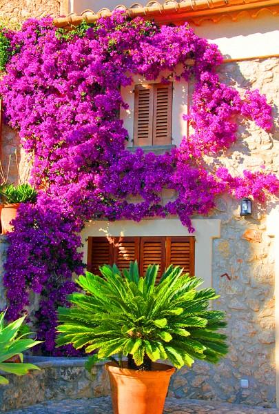 Impressionen von Pollensa auf Mallorca