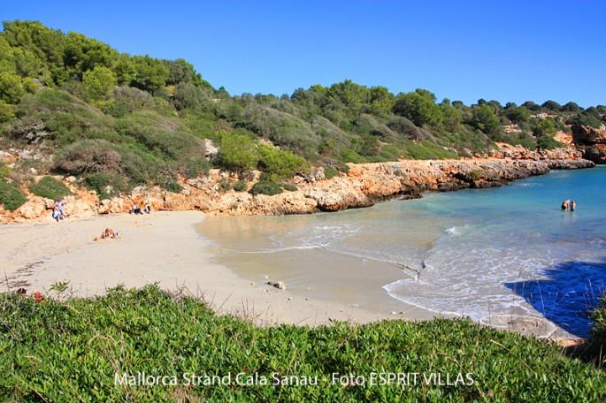 Strand von Cala Sanau auf Mallorca