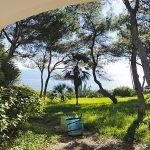 Ferienhaus Mallorca MA4795 Blick in den Garten