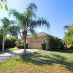 Ferienhaus Florida FVE41845 Palme