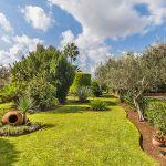 Ferienhaus Mallorca MA23370 Garten mit Rasenfläche