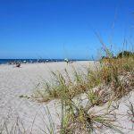 Strand Manasota Beach 4