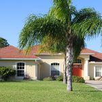 Ferienhaus Florida FVE3816 Palme vor dem Haus