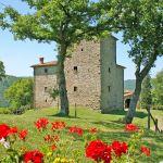 Ferienhaus Toskana TOH745 Garten mit Blumen