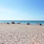 Strand Manasota Beach 3