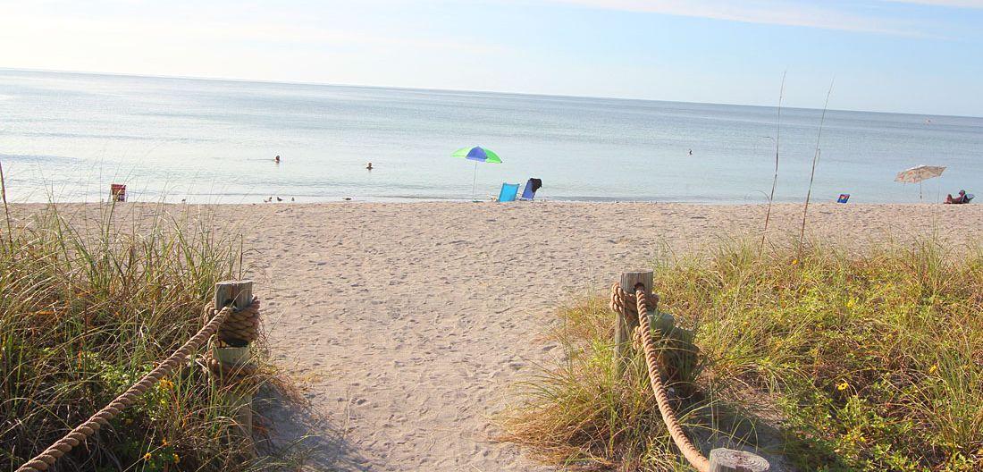 Florida Strand Turtle Beach