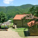 Ferienhaus Toskana mit Pool und Hund TOH380 Hauszufahrt