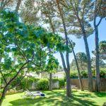 Ferienhaus an der Costa Brava CBV2164 Garten mit Bäumen