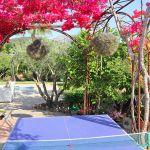 Ferienhaus Mallorca MA33403 Tischtennis-Platte und Bouganvilea-Busch