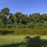 villa-florida-fve5005-ausblick