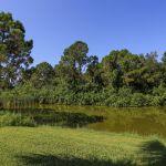 villa-florida-fve5005-blick-auf-einen-teich
