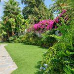 Villa Costa del Sol CSS4111 Bouganvilea im Garten