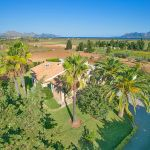 Ferienhaus Mallorca MA43507 Blick auf das Grundstück