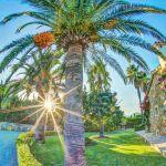 Ferienhaus Mallorca MA43507 Palmen