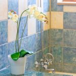 Ferienhaus-Zypern-ZYS4741-Bad-mit-Blume