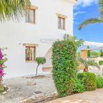 Ferienhaus-Zypern-ZYS3730-Palmen
