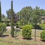 Ferienhaus Toskana TOH630 Garten mit Büschen und Zypressen