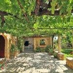 Luxus-Finca Pollensa MA5371 Terrasse mit Weinreben