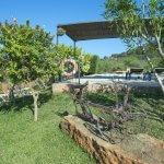 Ferienhaus Mallorca MA33183 Garten
