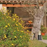 Ferienhaus Mallorca MA3520 Blumen im Garten
