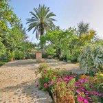 Ferienhaus Mallorca MA3520 Garten mit Palmen und Bueschen