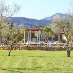 Ferienhaus Mallorca MA4170 Garten mit Rasenfläche