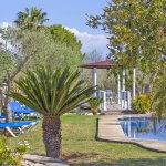 Ferienhaus Mallorca MA4170 Palmengarten