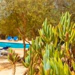 Ferienhaus Mallorca MA3966 Pool im Garten