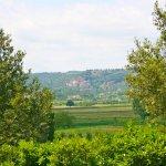 Ferienhaus Toskana TOH625 Ausblick