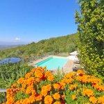 Ferienhaus Toskana TOH960 Blick auf den Pool