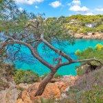 Villa Mallorca MA5549 direkt am Meer_bearbeitet-1